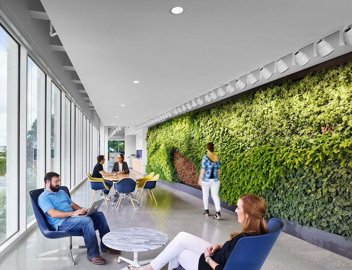 A living wall is just one of the ways that the offices promote wellness. Image courtesy of Casey Dunn.