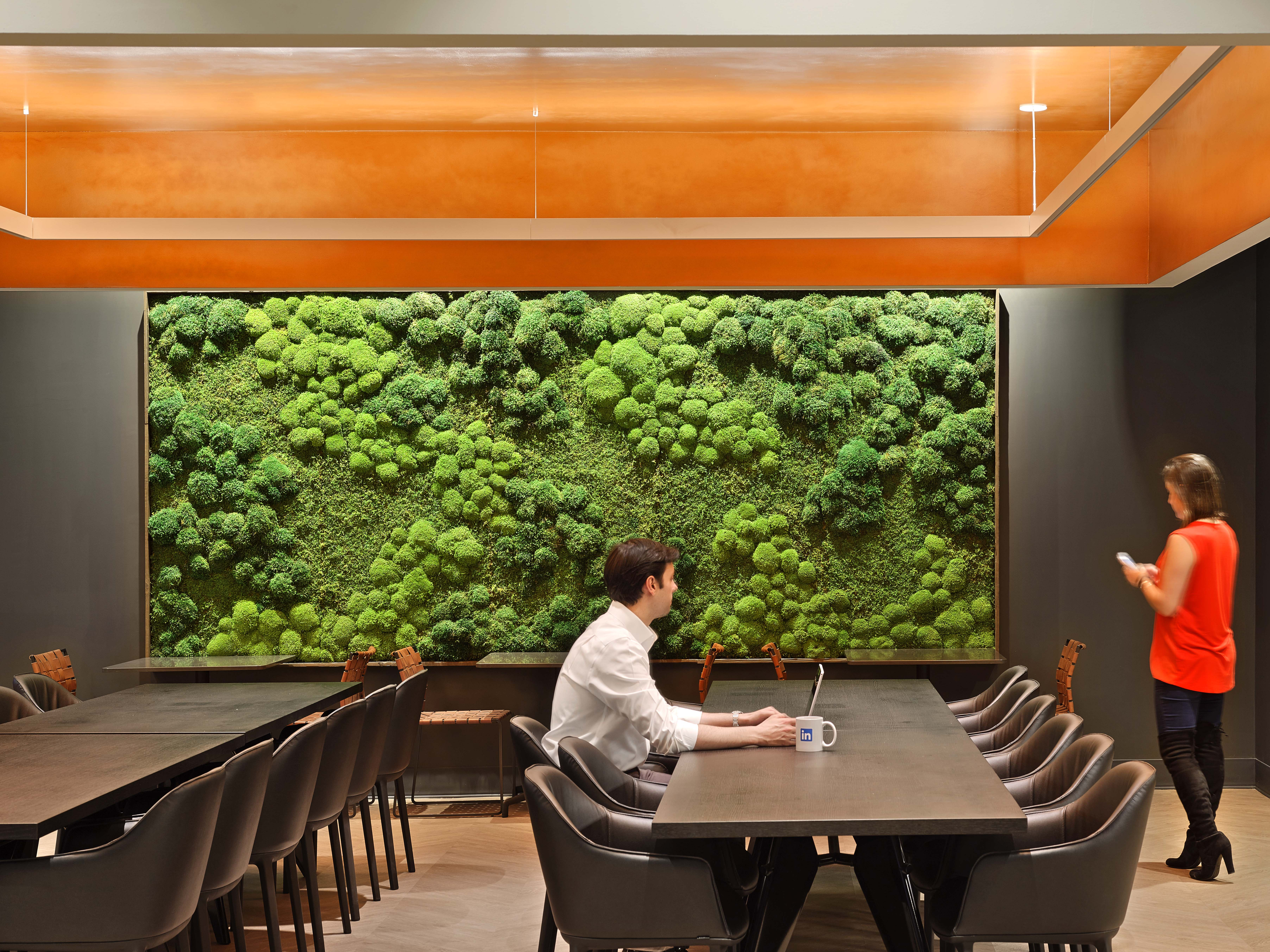 Connecting People To Nature Within The Corporate Office Work